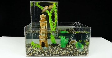 AQUARIOPHILES HOW TO MAKE A MULTI-LEVEL AQUARIUM